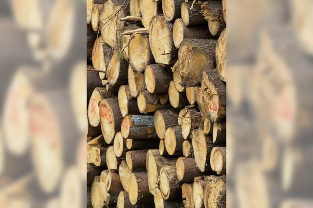 Wald spült knapp 34 000 Euro in die Gemeindekasse