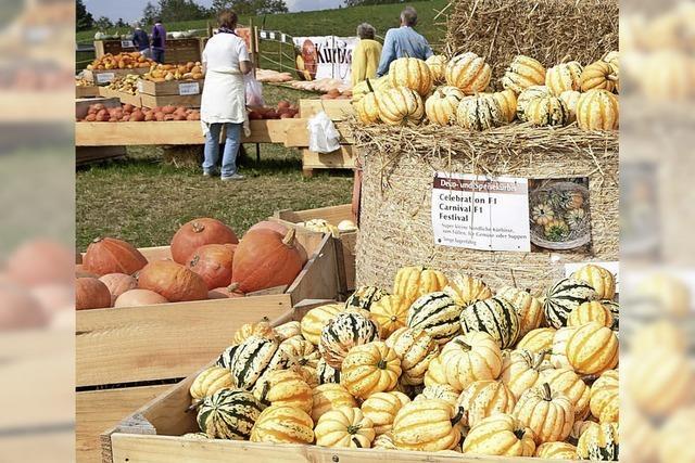 Herbstmarkt lockt Besucher nach Frohnschwand