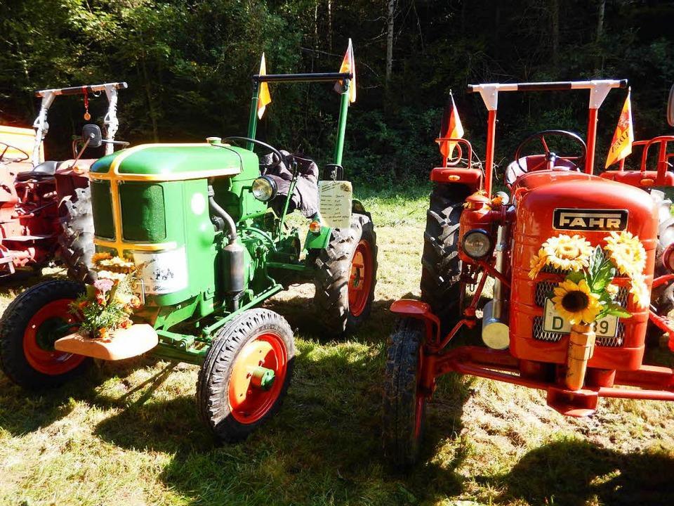 Geschmückt wie das Vieh beim Viehauftr... Traktoren beim Hasler Oldtimertreffen  | Foto: Katharina Maß