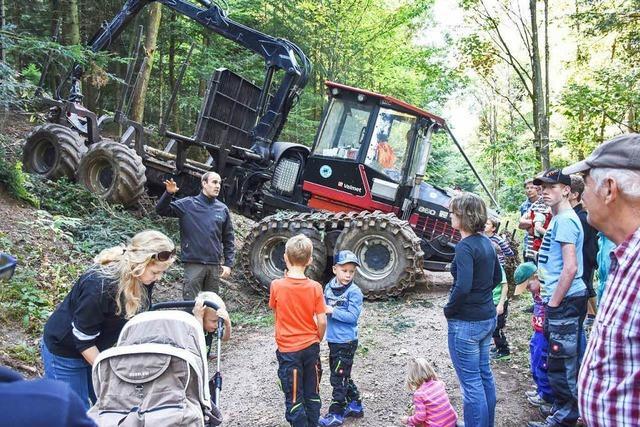Besucher staunen im Wald als großen Arbeitsplatz