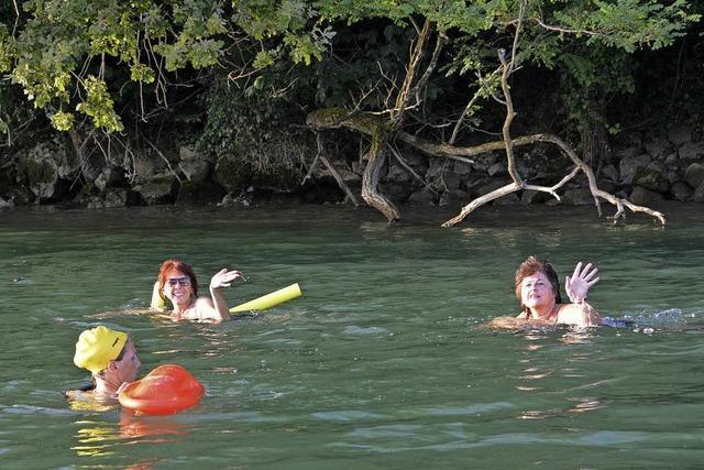 Viele Schwimmer lassen sich rheinabwärts treiben