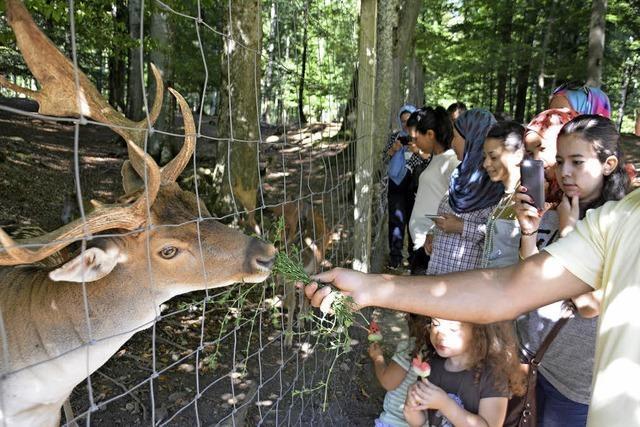 Flüchtlinge entdecken heimische Tiere