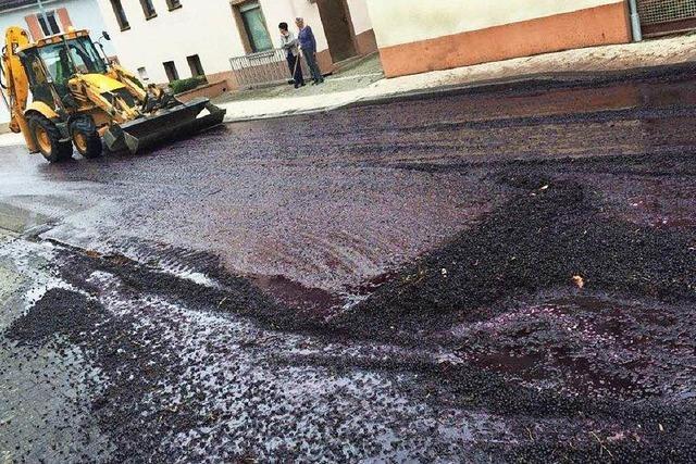 Winzer verliert mehrere Tonnen Trauben auf der Straße