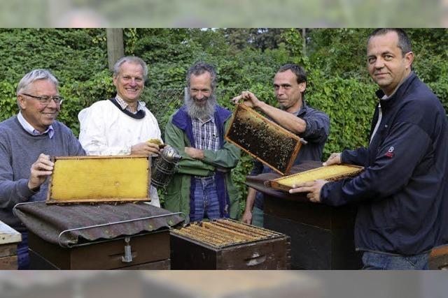 Der Imkerverein Freiburg will das Bewusstsein für die Bedeutung der Bienen schärfen