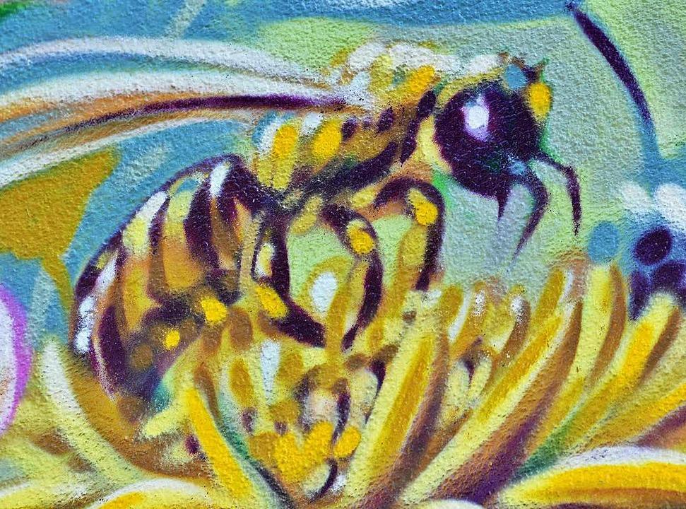 Biene in Nahaufnahme  | Foto: Michael Bamberger