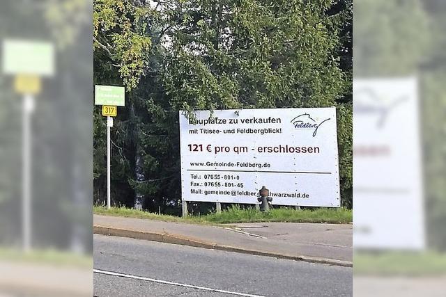 Feldberg verkauft jetzt 13 Bauplätze