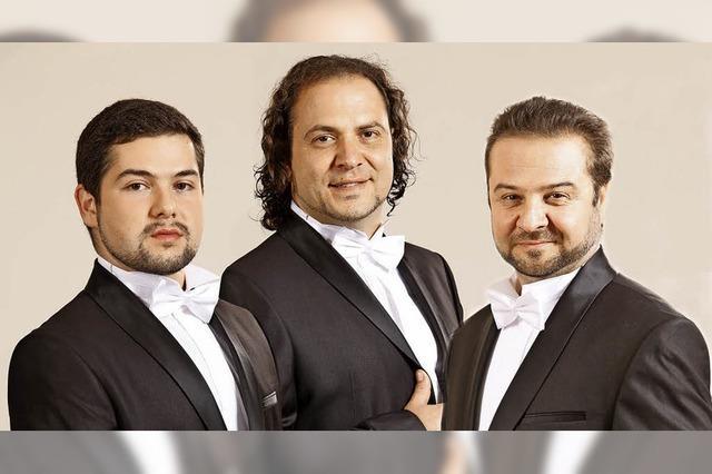 Ensemble Sacralissimo mit Opernarien und Lieder aus aller Welt