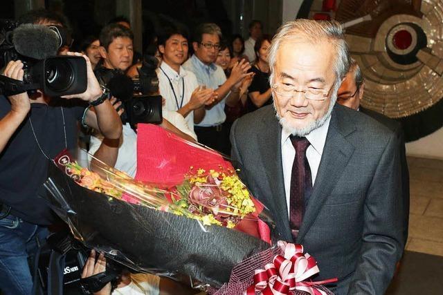 Yoshinori Ohsumi bekommt den Medizin-Nobelpreis
