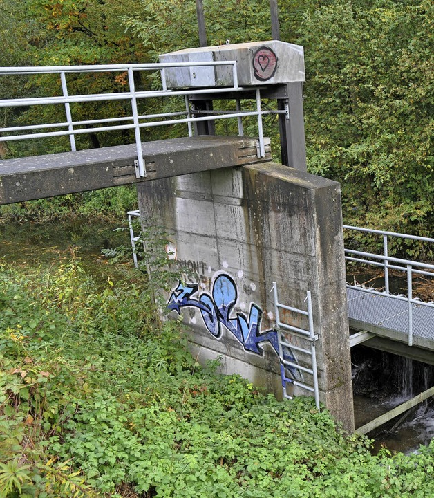 Beim Vergrößern des Dietenbachbeckens ...en Auslassbauwerk modernisiert werden.  | Foto: steckmeister