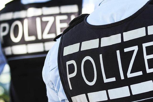 Polizeireform wird unter die Lupe genommen