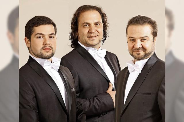 Trio Sacralissimo gibt Konzert in der Kirche St. Peter und Paul in Bad Säckingen