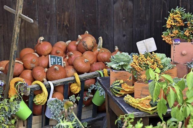 Früchte des Herbsts