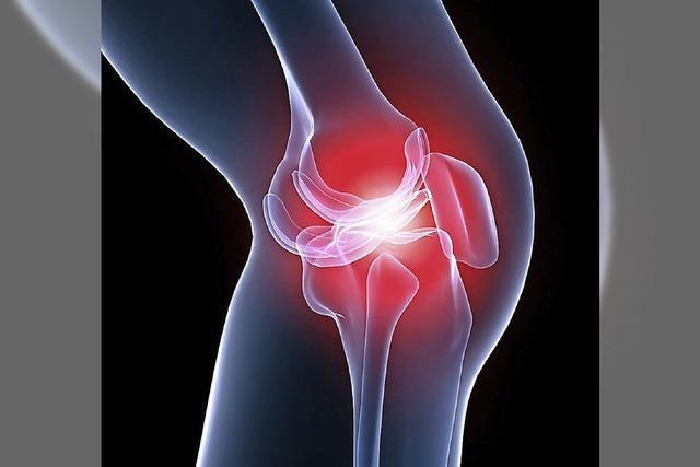 Prävention und Therapie von Arthrose