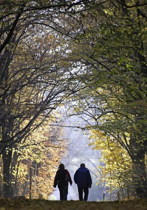 Seite an Seite, auch wenn der Partner längst in seiner eigenen Welt lebt.  | Foto: Symbolbild: DPA