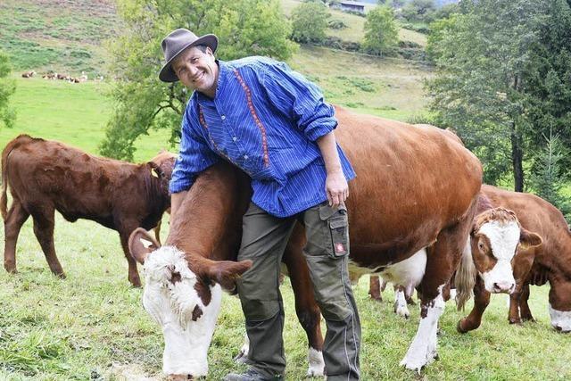 Stefan Martin organisiert Viehabtrieb mit 134 Rindern