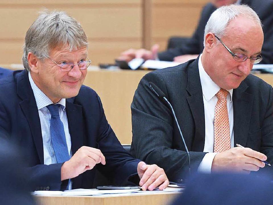 AfD-Vorsitzender Jörg Meuthen (links) und AfD-Fraktionsvorsitzender Heinz Merz    Foto: dpa