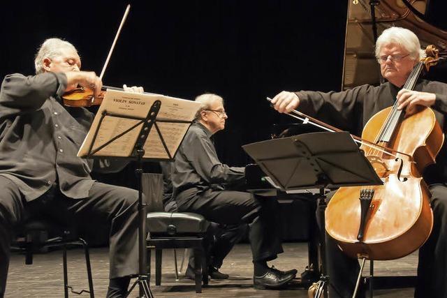 Dreisam-Trio eröffnet Saison