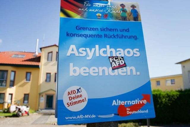 AfD will bei Bürgermeisterwahlen antreten
