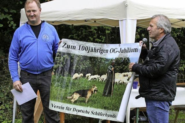 Freiburger Schäferhunde-Verein feiert 100. Geburtstag