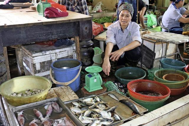 Nach einer Chemiekatastrophe kämpfen Fischer und Händler ums Überleben