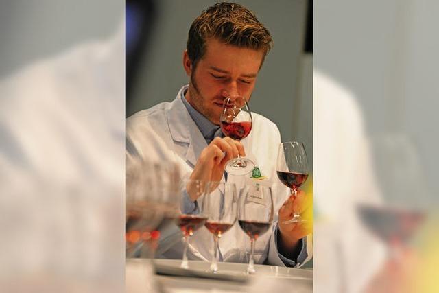 Viel Edelmetall bei der DLG-Bundesweinprämierung