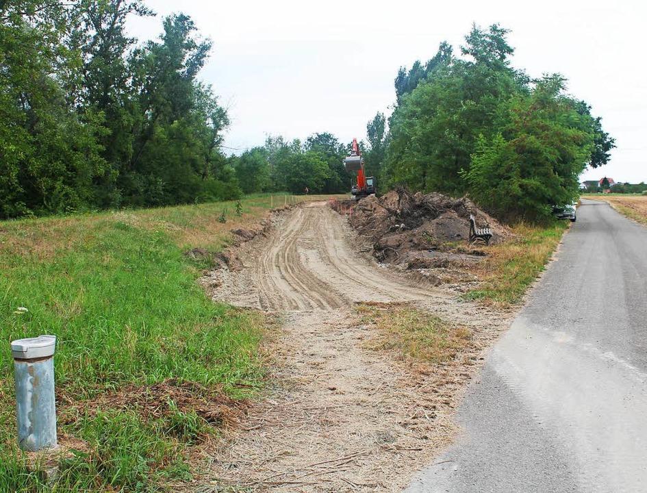 Der Bau des Dammverteidigungswegs beim...vorbereitende Arbeiten für den Polder.  | Foto: Beate Rottler