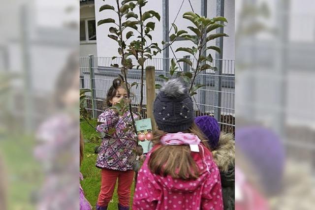 Naschgarten für Kinder