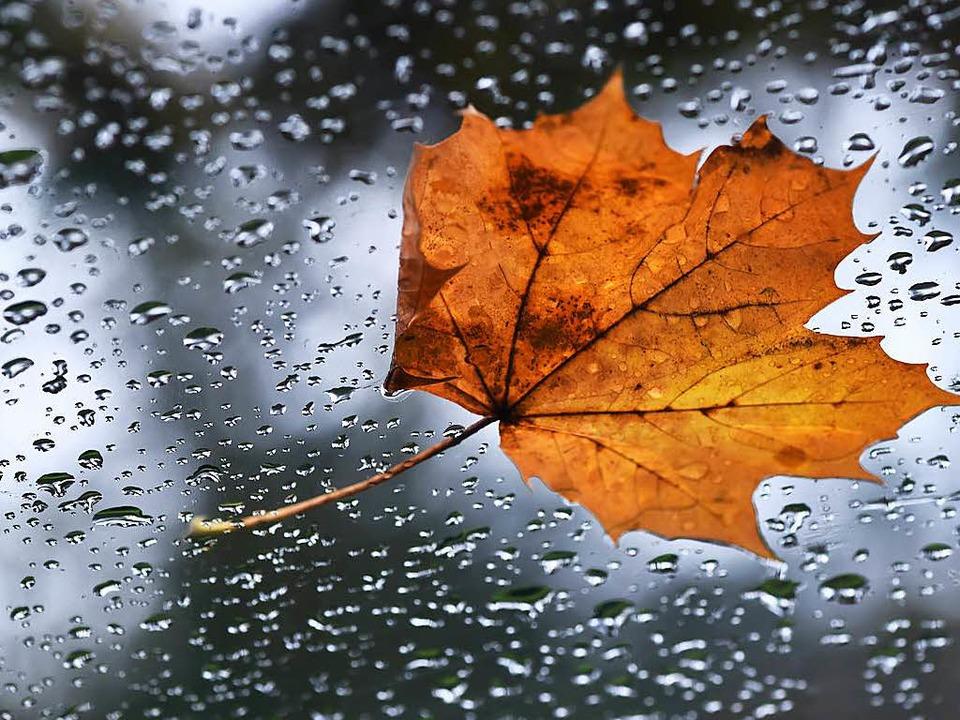Dauerregen wird es wohl nicht geben.    Foto: dpa