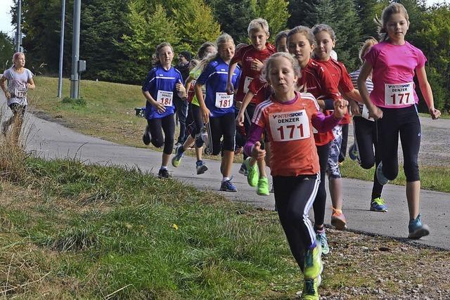 Beim Crosslauf auf dem Eisenbacher Höchst beweisen die Läufer der Schülerklassen ihr Talent