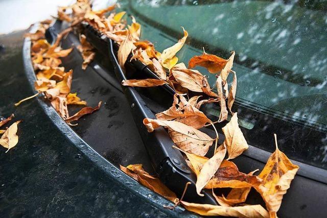 Autofahrer sollten sich auf die Herbst-Tücken einstellen