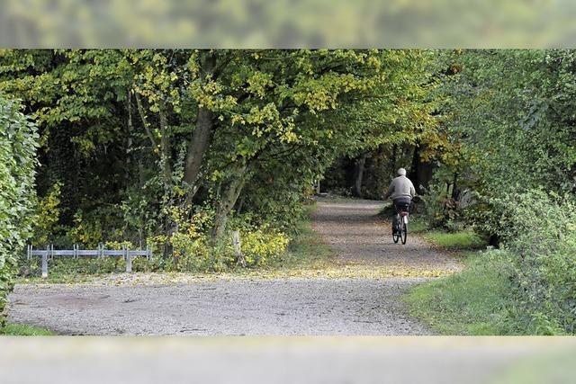 Waldkindergarten-Abholplatz wird wieder verlegt