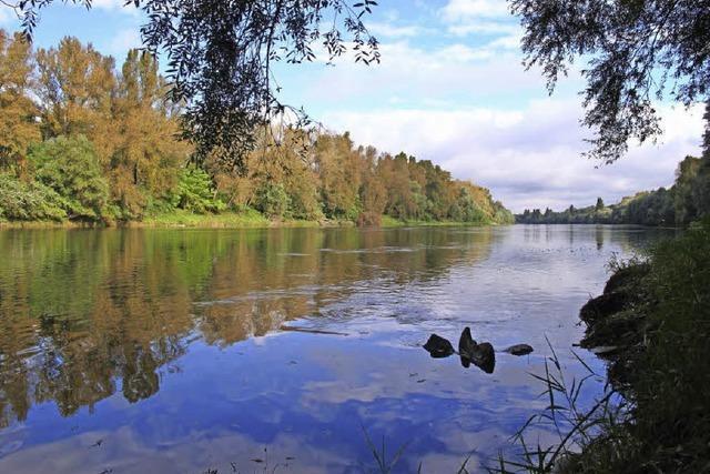 Der Rhein soll erlebbar werden