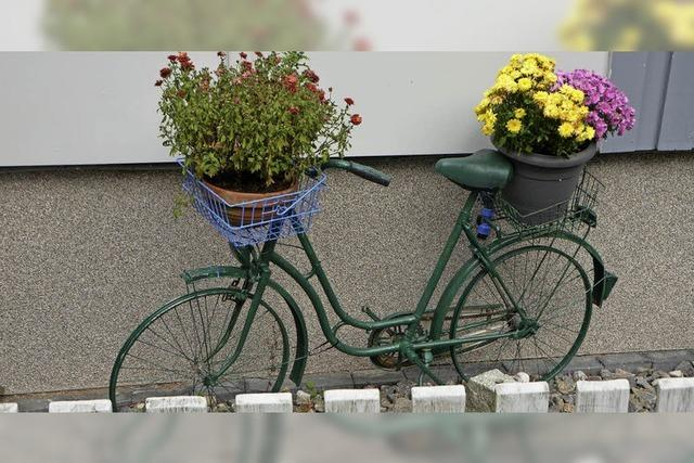 Das Rad als Blumentopf