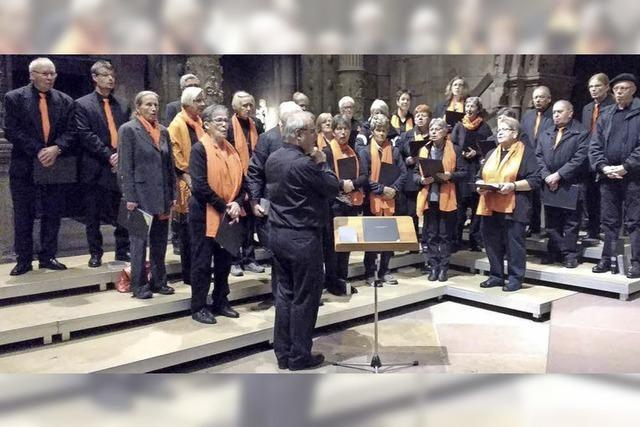 Kirchenchor beeindruckt im Freiburger Münster