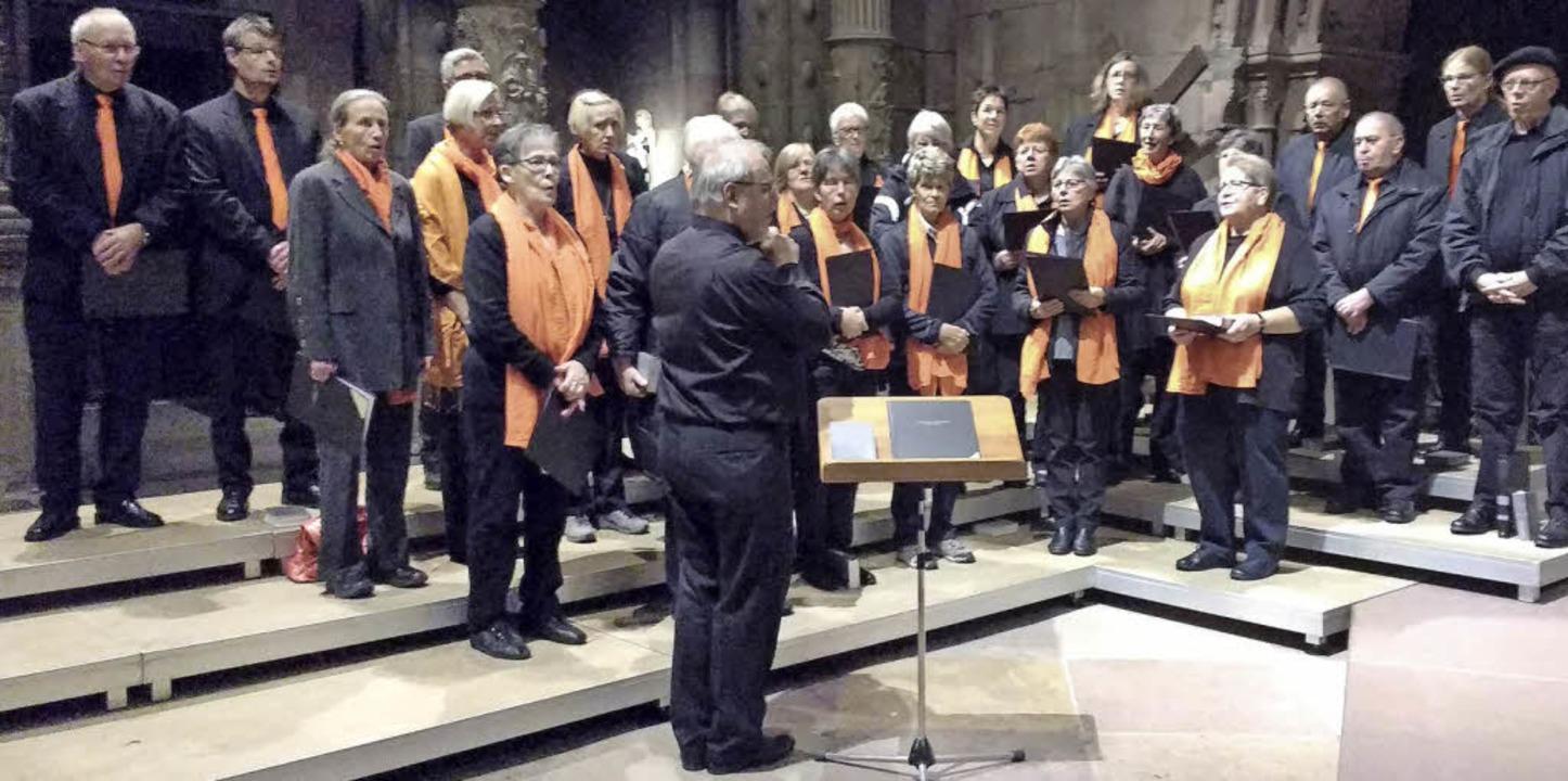 Der Kirchenchor Todtmoos – verst...en Gottesdienst im Freiburger Münster.  | Foto: Gertrud Freitag