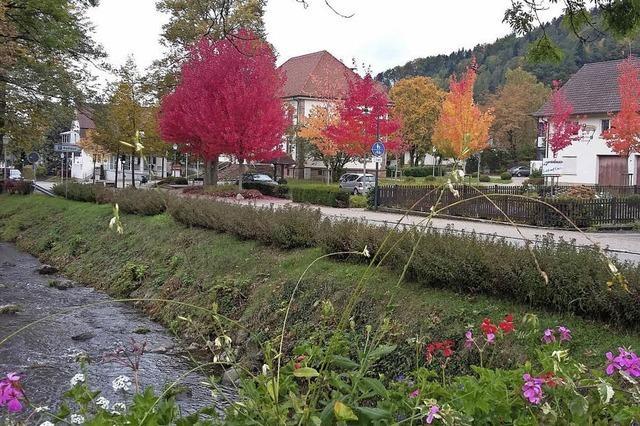 Herbstliches Magenta