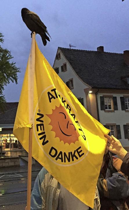 Fahne mit Dohle  | Foto: Privat