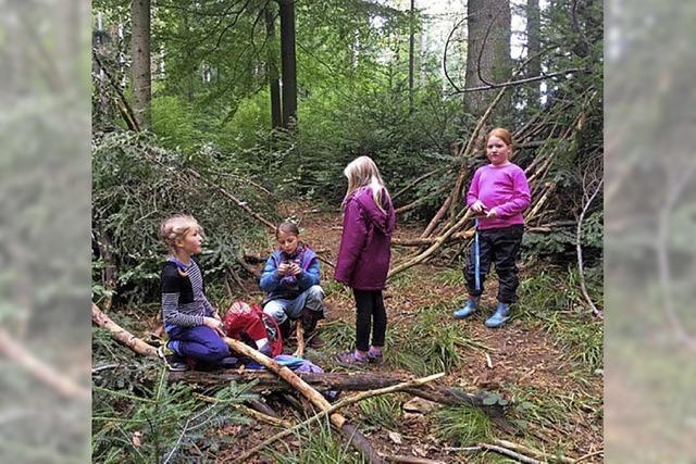 Den Geheimnissen des Waldes auf der Spur