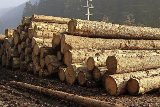 Revierförster Andreas Mutterer stellt dem Gemeinderat den Forstplan für 2017 vor