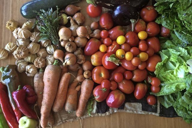 Solidarische Landwirtschaft will wachsen