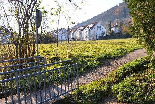 Klage legt Lörracher Baugebiet Soormattbach lahm
