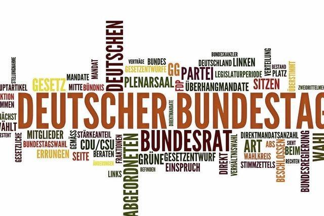 Wahlrechtsreform soll verhindern, dass Bundestag wächst