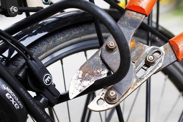 Polizei fasst Fahrraddieb