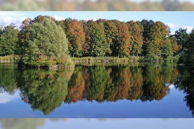 Herbststimmung am Allmendsee in Rust