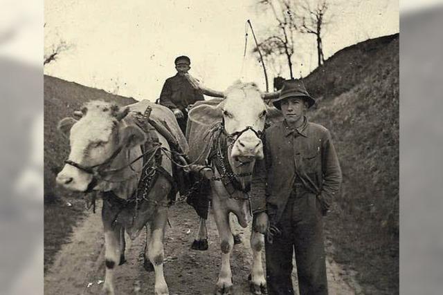 Vor 75 Jahren wurde Waclaw Zenszykiewiez im Steinbruch erhängt