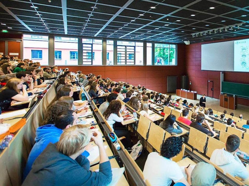 Ein Professor aus Karlsruher klagt gegen das Landeshochschulgesetz.  | Foto: dpa