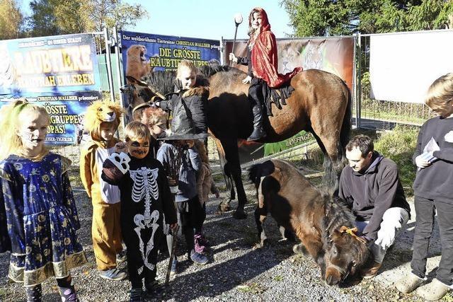 Vampire, Skelette und das kleinste Pony der Welt