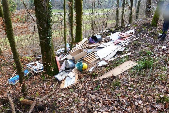 Wenn der Wald zur Müllkippe wird