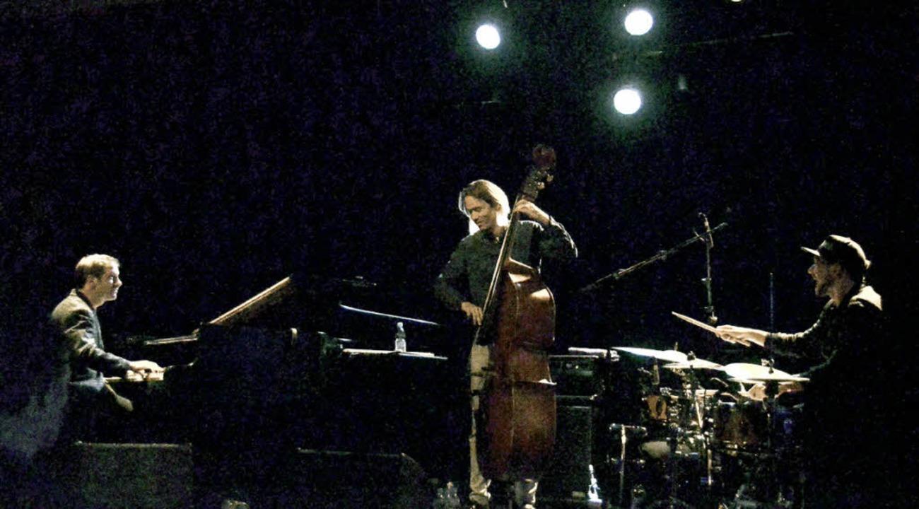 Bass, Piano und Drums verschmelzen zu einem Klang.    Foto: Manuel Fritsch
