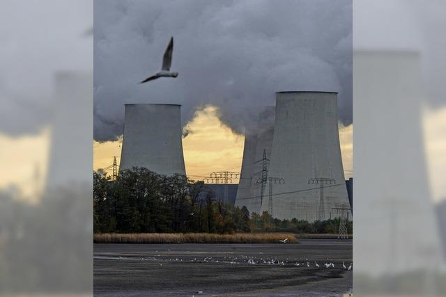 Der Klimawandel verursacht Milliardenschäden